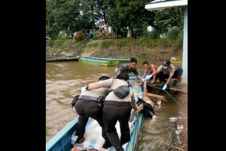 Warga Jongkong Temukan Mayat Mengapung di Kapuas