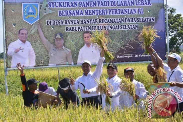 Ministry projects S Kalimantan as food barn outside Java