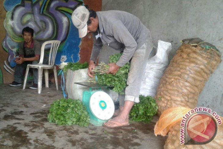 Cuaca Ekstrem Pengaruhi Kenaikan Harga Jual Sayuran