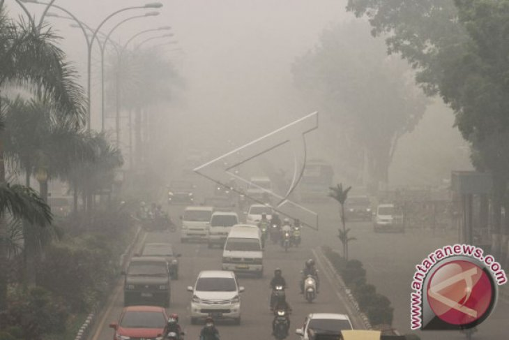 Riau governor announces state of emergency after air pollution surges