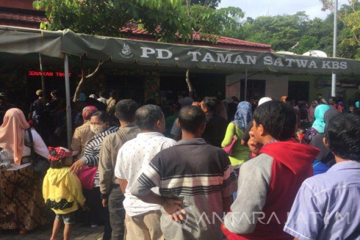 Jumlah Pengunjung Di Kebun Binatang Surabaya Meningkat Antara News Jawa Timur