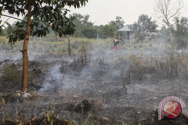 Riau declares emergency standby status over land and forest fires