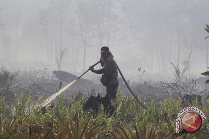 BMKG detects 150 hotspots in Sumatra