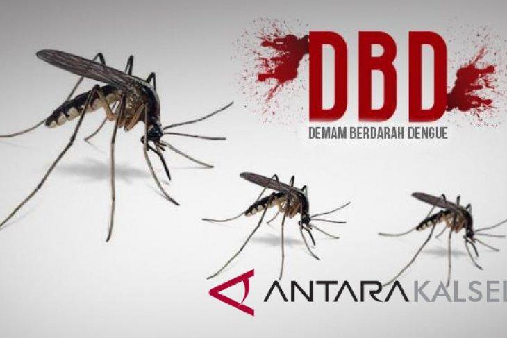 Semua Kecamatan Terserang Demam Berdarah Dengue