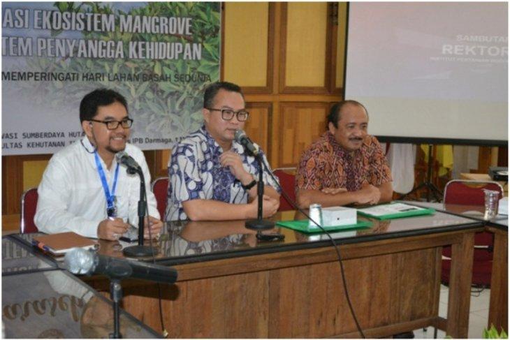 Rektor tantang IPB jadi etalase mangrove berbasis ekowisata
