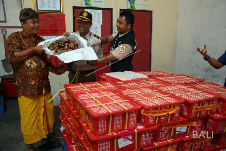 Kementan lepas ekspor 93 ton manggis Pandeglang ke China