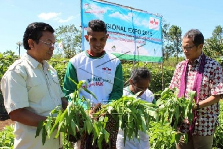 DPRD Banten Bahas Penyertaan Modal BUMD  agrobisnis