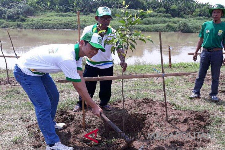 1.500 bibit pohon ditanam di lokasi longsor