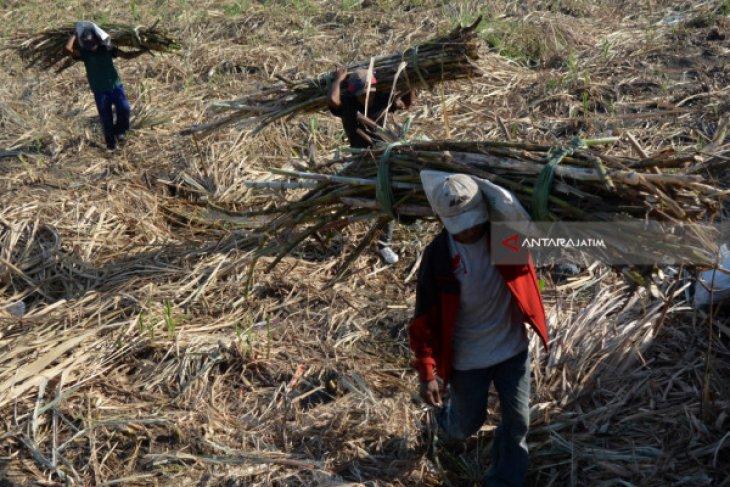 Anggota Komisi VI DPR dorong Kemenperin audit pabrik gula KTM di Jatim