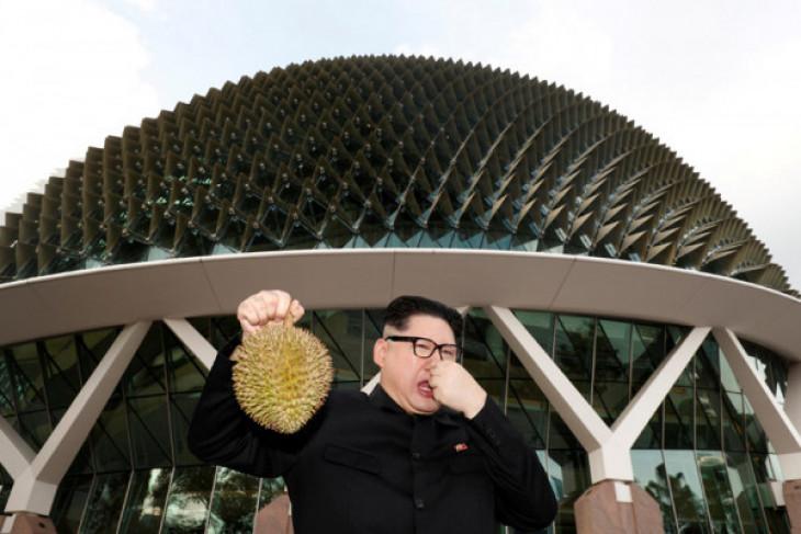 Ilmuwan ubah limbah durian jadi perban anti bakteri