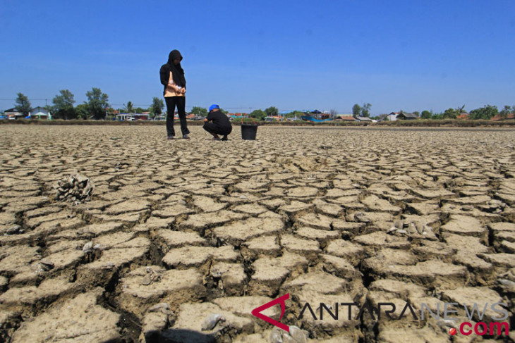 Drought affects 22 districts, cities in West Java
