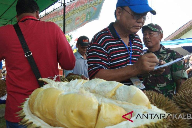 Ratusan peserta ikut kontes durian Sanggau