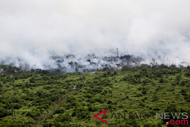 Forest, land fires in Musi Banyuasin extinguished successfully
