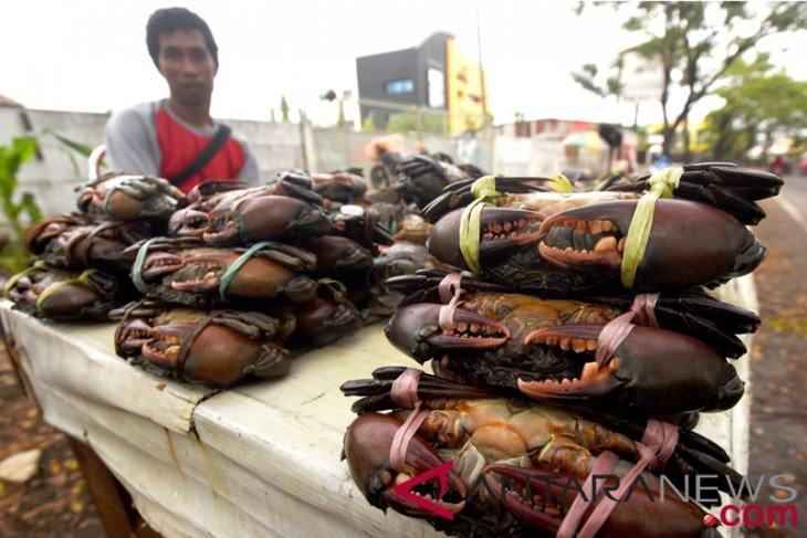 Police foil smuggling of 2,609 crabs to Malaysia