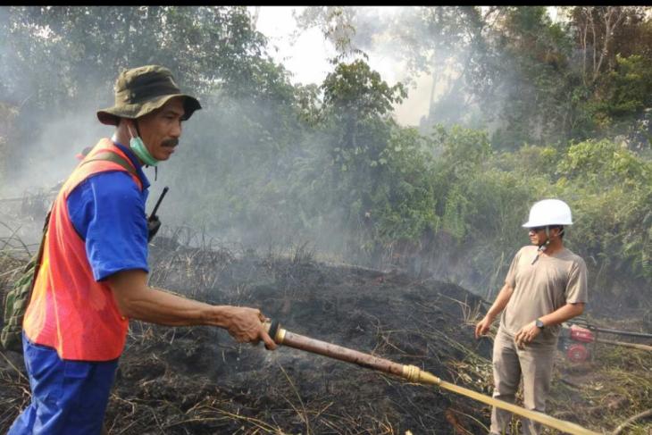 Lahan samping Jembatan Kapuas Tayan terbakar