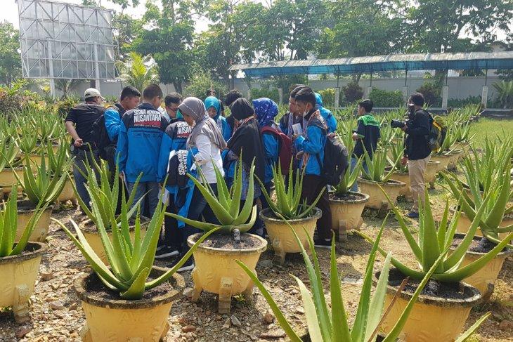 Kunjungan SMN di Aloe Vera Center