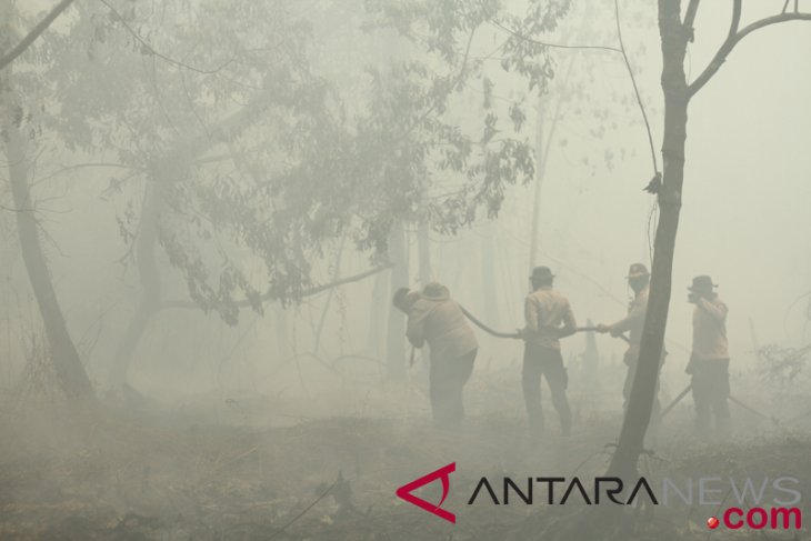 BMKG detects 84 hotspots in Sumatra