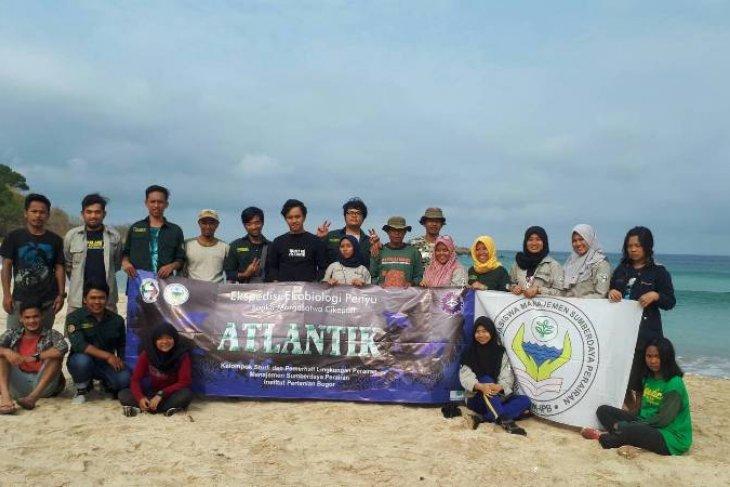 Atlantik Himasper IPB Jaga Kelestarian Penyu melalui Gerakan Ekspedisi Ekobiologi Penyu