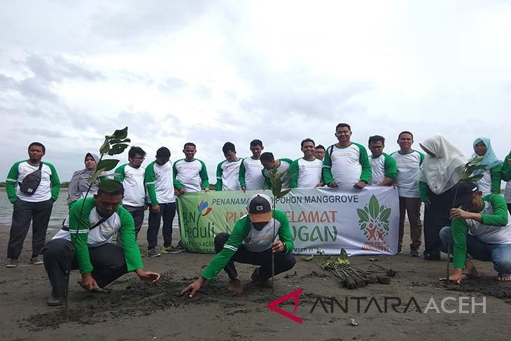 PLN tanam 1.000 mangrove di Aceh