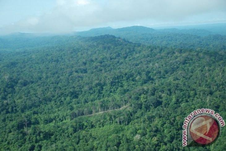 Heart of Borneo model of inclusive green development: WWF