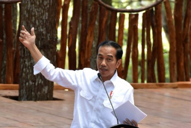 Presiden pastikan Indonesia pemegang saham mayoritas Freeport