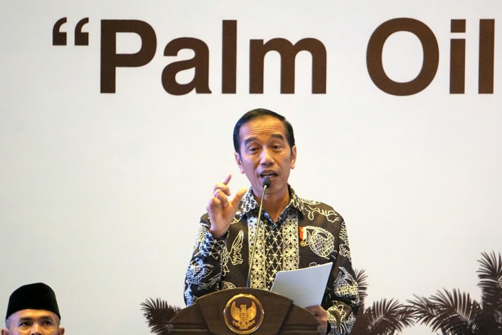 Jokowi calls for increase in palm oil production