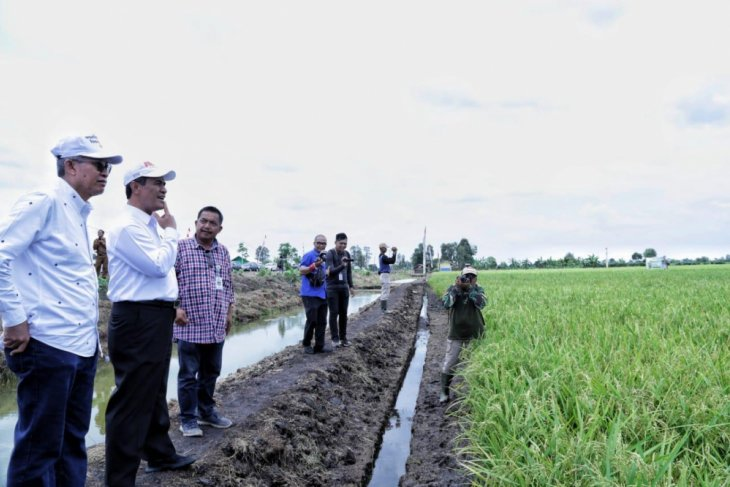 World Food Day momentum for Indonesia to become world's food barn