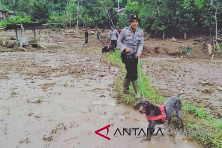 Pencarian korban banjir Tanah Datar libatkan anjing pelacak