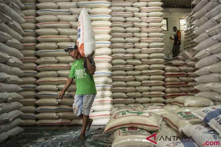 Rice stock must be adequate until harvest season: researcher