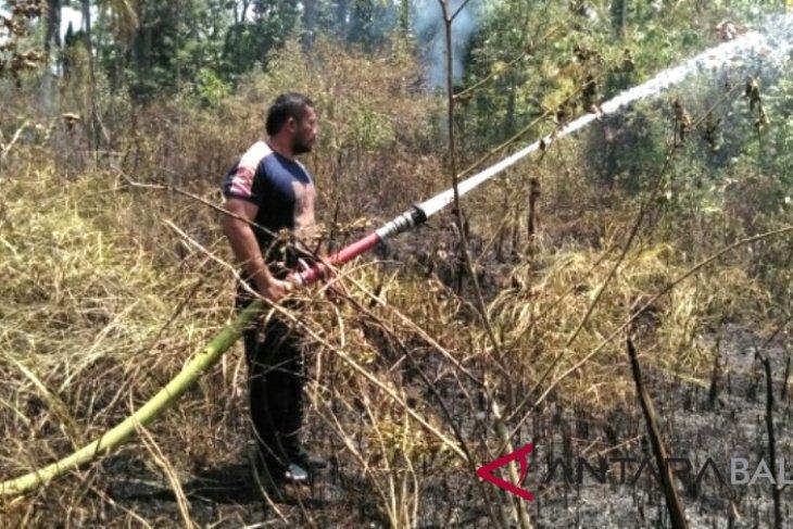 Tiga hektare kebun di Jembrana terbakar