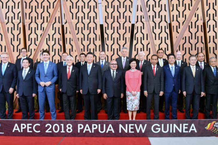 Jokowi attends number of activities at APEC Summit