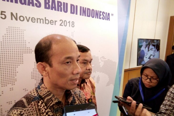 Giant oil discovery possible in Indonesia: Arcandra