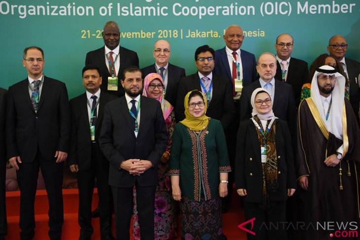 Indonesia has potential to lead OIC in medical sector: Ministry