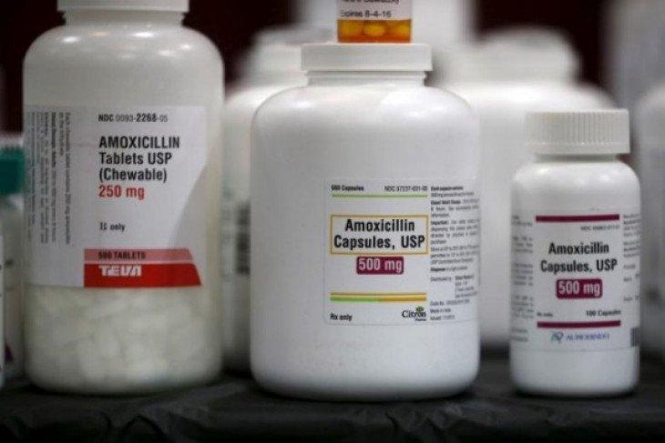 Kementan dan FAO ajak tingkatkan kewaspadaan ancaman resistensi antibiotik