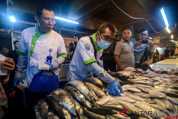 Fisheries investment concentrated in Java: Ministry