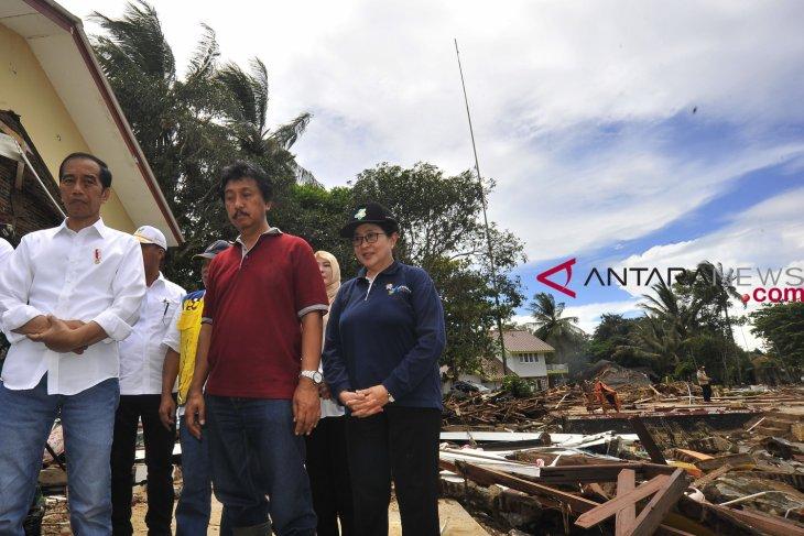 Medicine stocks for tsunami victims are adequate: minister