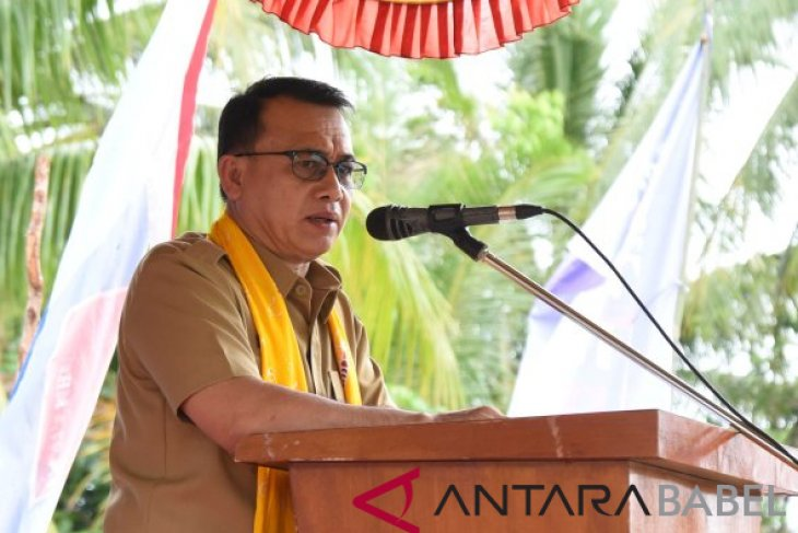 Wabup Bangka ingatkan ASN jaga netralitas politik