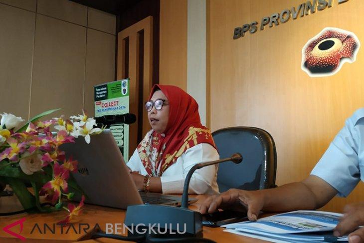 Transportasi udara penyebab utama inflasi Bengkulu Desember