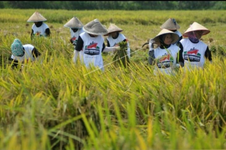 DPRD Penajam Beri Rapor Merah Dinas Pertanian