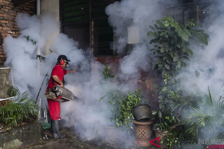 North Maluku health office reports 112 residents contracted dengue fever