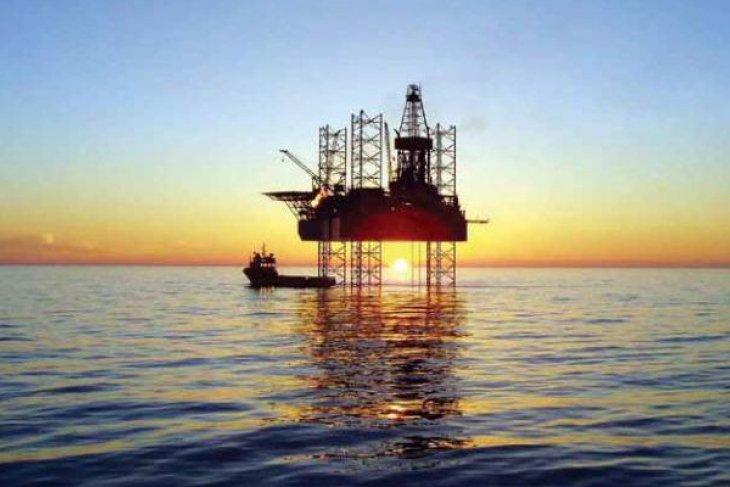 Harga minyak dunia jatuh, meski ada kejutan penurunan stok minyak mentah AS