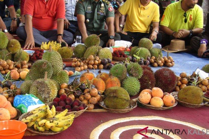 Festival buah lokal kuak kekayaan alam Kalsel