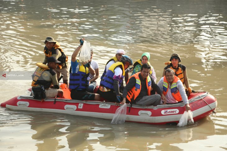 15 Ribu Benih Ikan Nila Dilepas di Sungai Kalimas Kota Surabaya