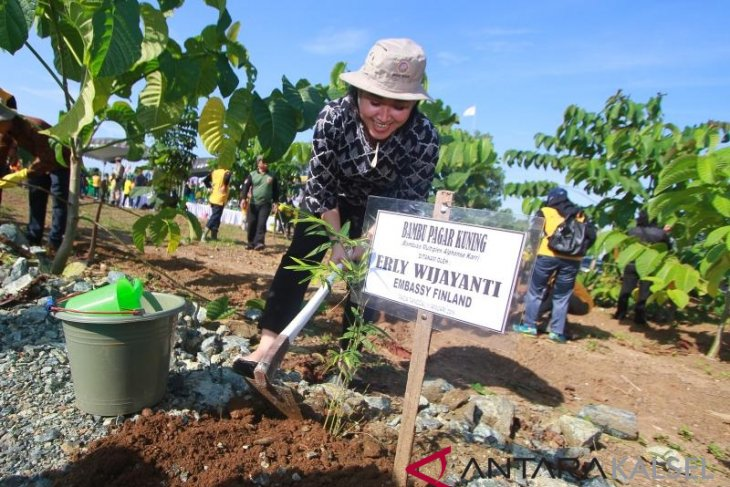 LHK Ministry appreciates S Kalimantan in managing forest city