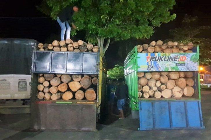 Polres Tebo amankan tiga  truk pengangkut kayu illegal