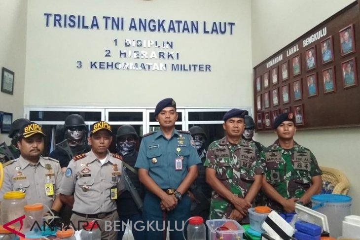 Lanal dan Balai Karantina amankan pengepul