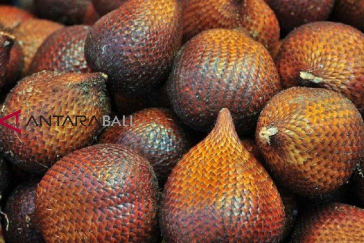 BK Denpasar permudah sertifikasi ekspor salak Bali ke luar negeri