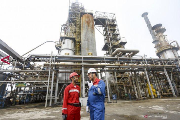 Menteri Rini usulkan pengolahan minyak sawit jadi BBM di Italia