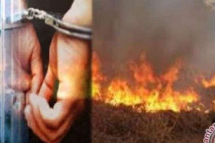 Polda Riau tetapkan 59 tersangka  pembakar hutan dan lahan
