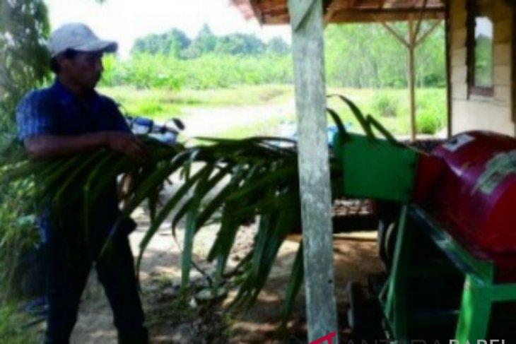 Pengolahan 8 juta ton batang limbah peremajaan sawit butuh dana besar